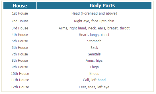 House body parts